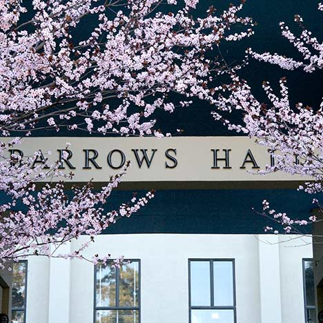 Cherry blossoms at Barrows Hall.  Photo by Keegan Houser.