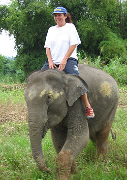 Julie Barnett rides Pang Lom, a 4-year-old elephant who was malnourished and frightened before being rescued from the streets and moved to an elephant sanctuary.