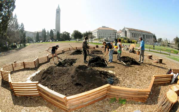 Planting the victory garden