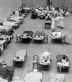 1918-20 influenza pandemic