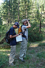 Bird researchers conducting a point count in the field