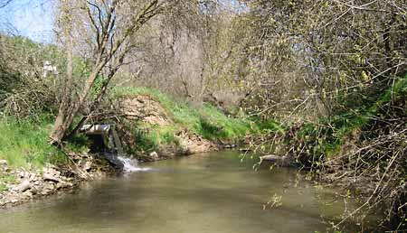 pipe discharging field runoff into Orestimba Creek