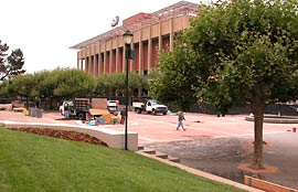 Grass replaces junipers in front of Sproul Hall