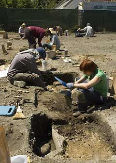 Students at Conservatory dig
