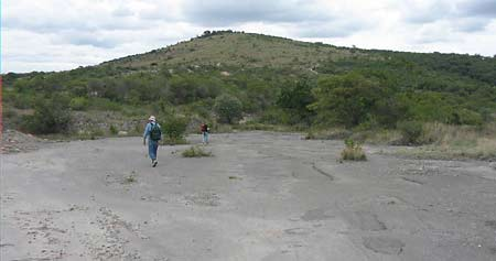 surface outcrop of xalnene tuff on which the alleged human footprints were found