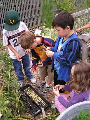 Kids conduct experiments in the garden