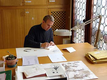 Matteo Garbelotto working on fungi specimens