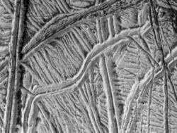 Ice ridges on the surface of Europa