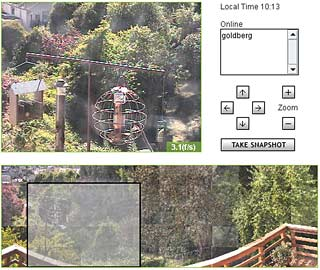 web interface for CONE Sutro Forest