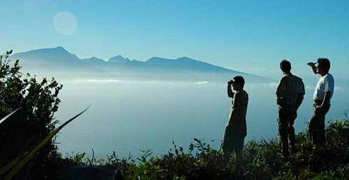 Botanists look out from Moorea
