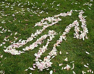 Outline in petals on the grass