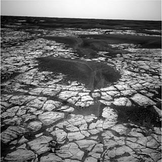 Opportunity Rover photo of Martian surface