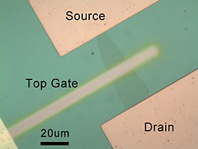 bilayer graphene device viewed through an optical microscope