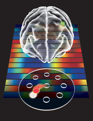 In experiments that involved moving a cursor from a central starting point to a nearby target, researchers found that the brain is capable of creating a stable mental representation of a disembodied device.