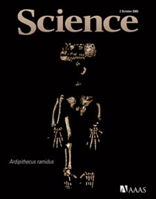 Ardi on the cover of Science magazine