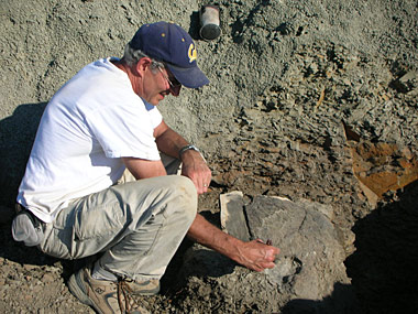Mark Goodwin collects a dinosaur skull