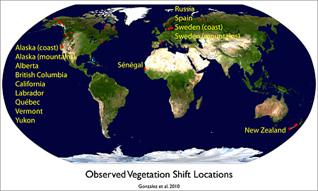Climate change leading to major vegetation shifts around the world