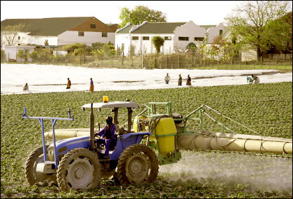 A tractor sprays pesticides on a food crop
