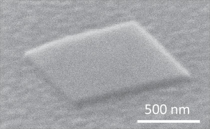 Electron microscope image of the plasmon laser