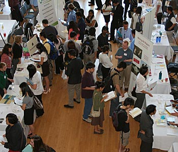 what to do at career fair