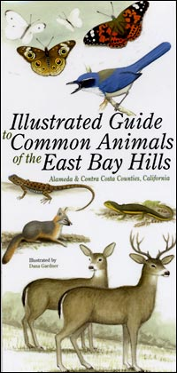 East Bay Hills field guide cover
