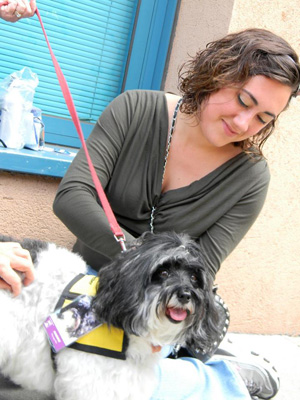 ARC pet therapy dog