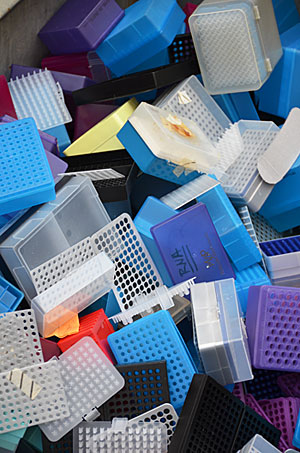 Plastic pipette racks in a bin