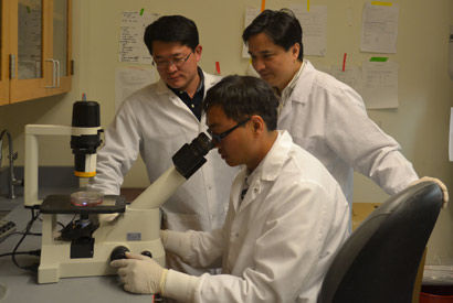 Stemcell researchers