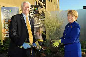 Chancellor Birgeneau and his wife plant miscanthus.