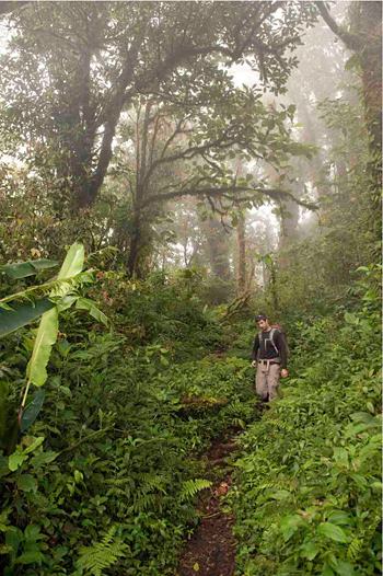 Greg Goldsmith in Monteverde National Park, Costa Rica.