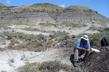 Paul Renne collecting volcanic ash samples in Montana.